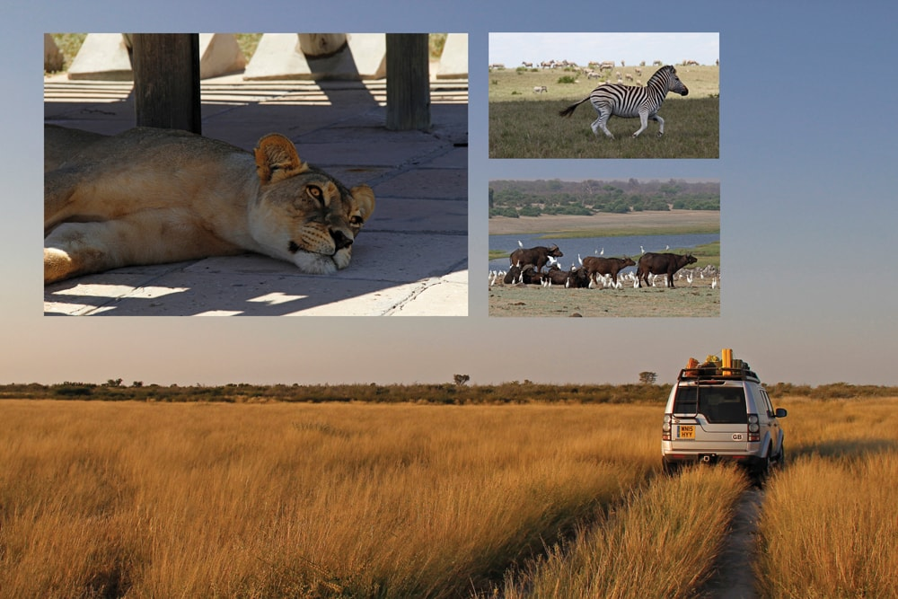 Discovery_4_Botswana_Caravan