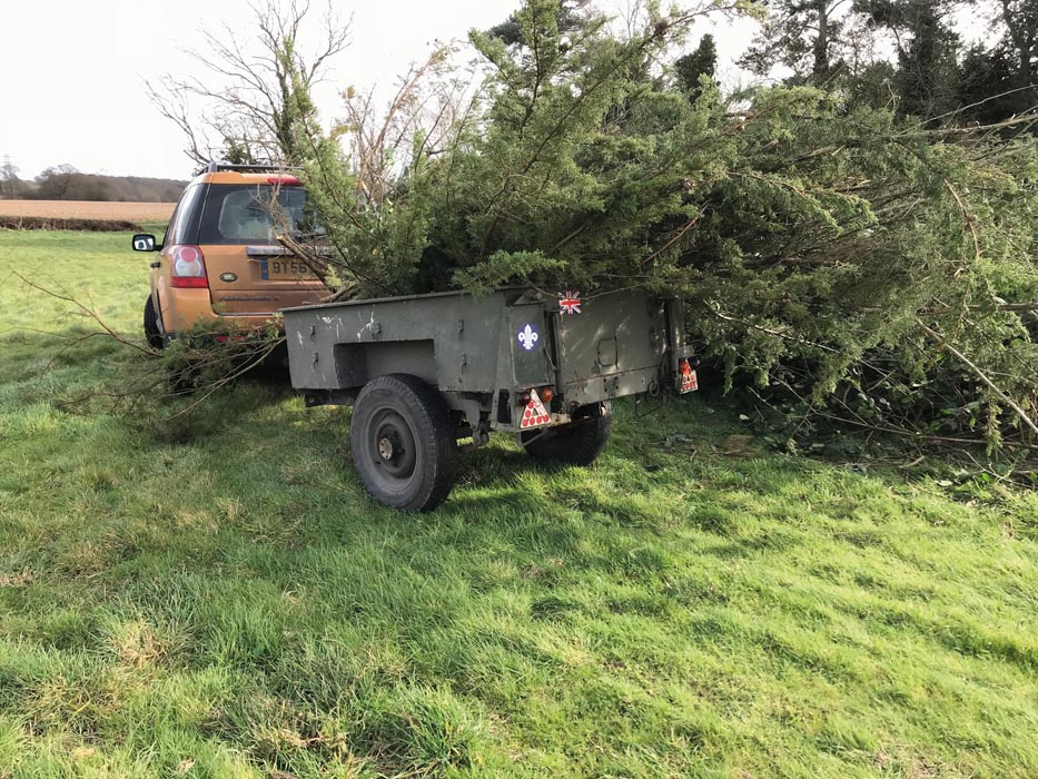 Freelander clearing trees