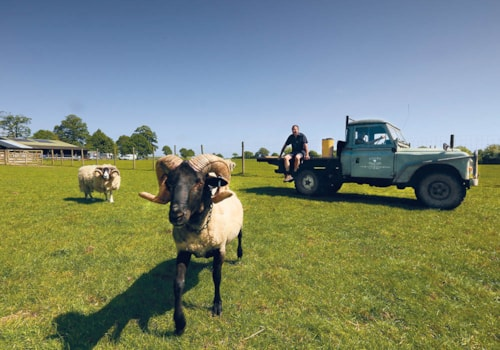 Land Rover Series III farm hack