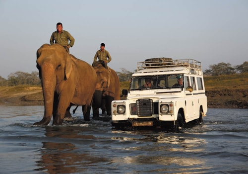 Elephants and Land Rovers at Chitwan National Park
