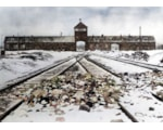 Auschwitz, as it was in 1945 when liberated by Soviet troops