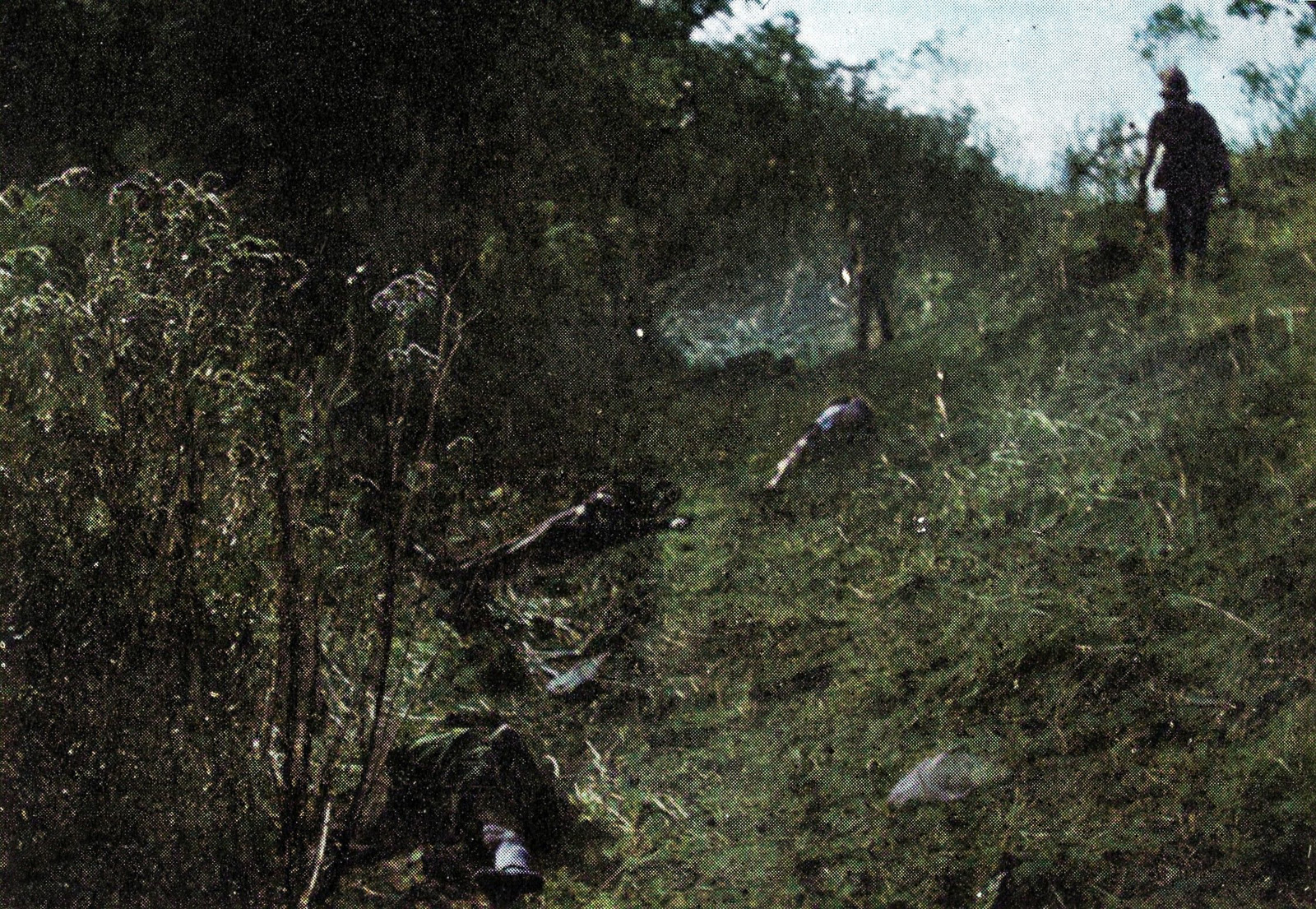 Colonial troops inspect rebel dead scattered along the path leading into the gorge