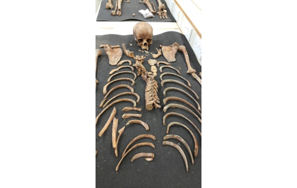 Rat-Island-findings-(Cranfield-University)-web--81409.jpg