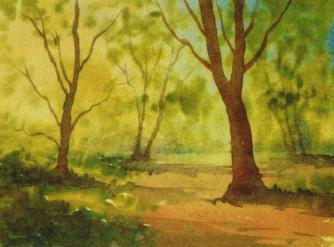 CS Colour sketch