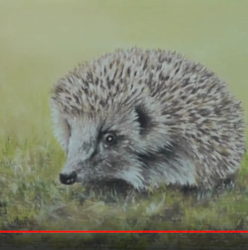 Screenshot_2019-10-10 Hedgehog Speed Painting by Colin Bradley - YouTube