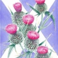 Thistles and Flag