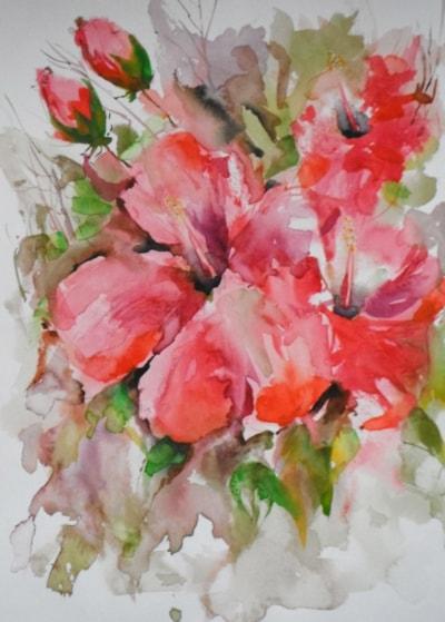 Hibiscus, 'RedTropical'