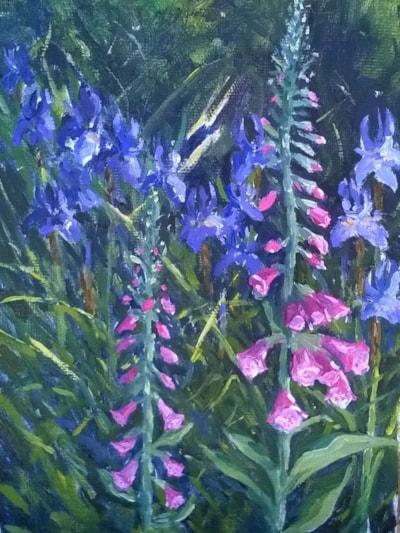 Foxgloves & Irises