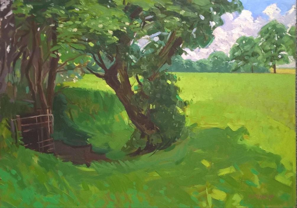 Sunlit Meadow, Lincs