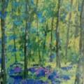 Bluebell Wood - En Plein Air SOLD