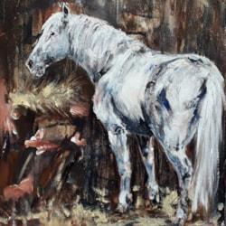 Old white pony