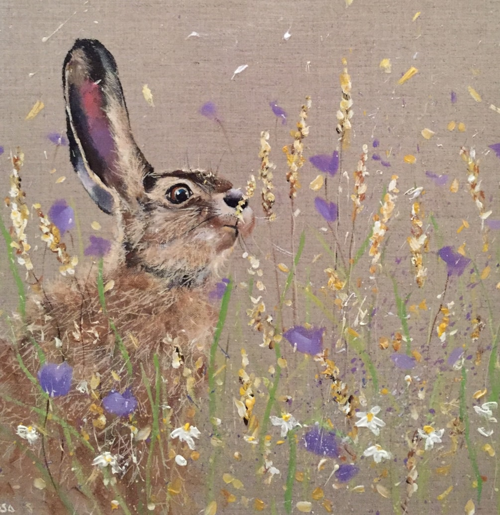 Hare, corn and clover