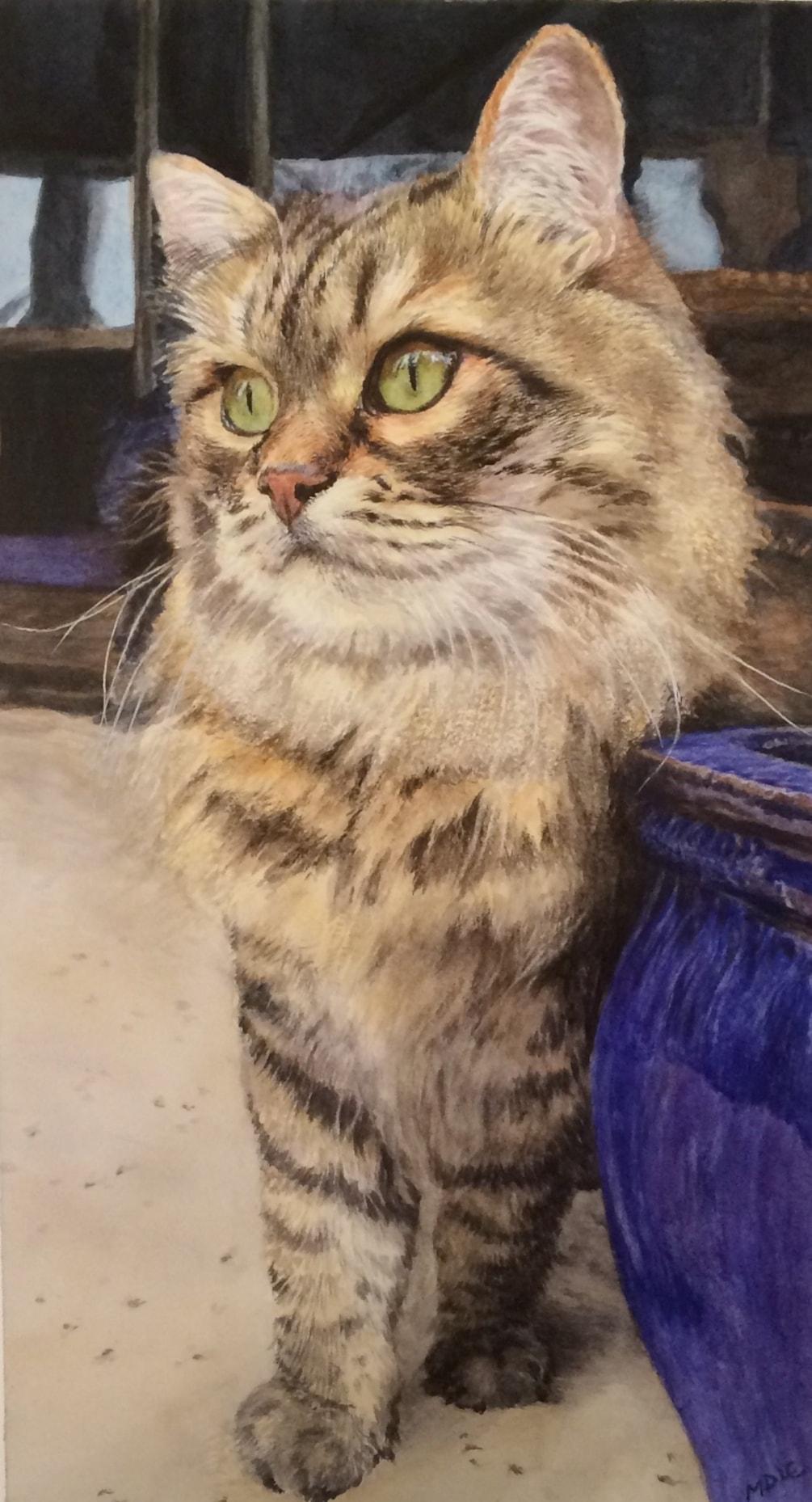 The Blue Pot Cat