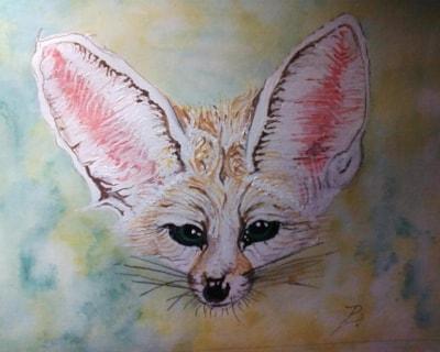 The tiny, beautiful Fennec Fox