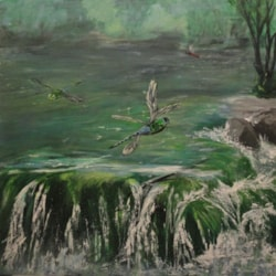 dragonfly Falls
