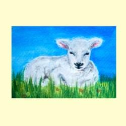 Spring_lamb