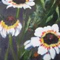 Summer Daisies II
