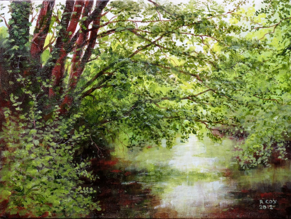 Trees overhanging the river