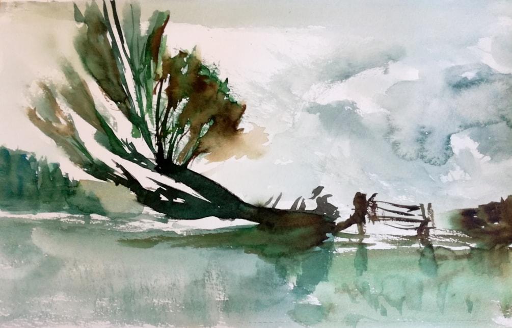 Landscape exercise 2