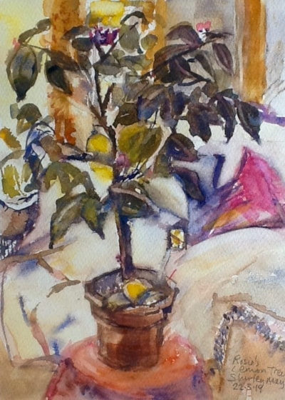 Rosie's lemon tree