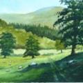 Dol-y-Fan Hill, Powys. Painting size 25cm x 36cm.