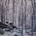 Winter Landscape 2009 (Llandogo Woods)