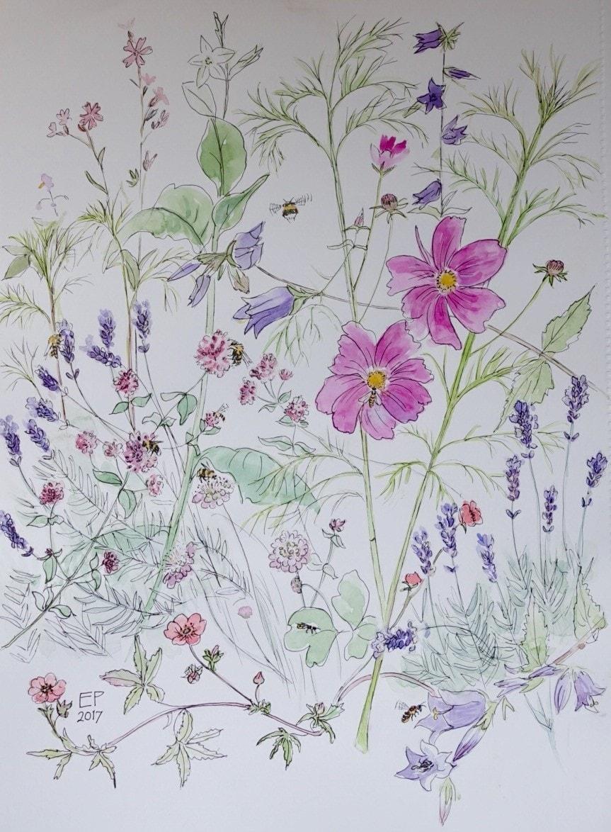 July flower border