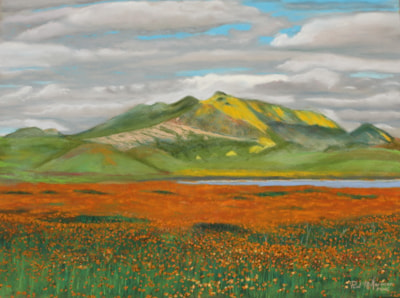 Carrizo Plains National Monument Super Bloom