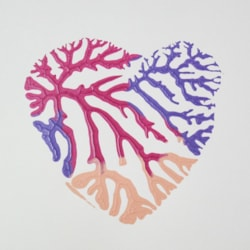 Dendritic Heart - Done as a card for me by my 14yr old grandson, Hector