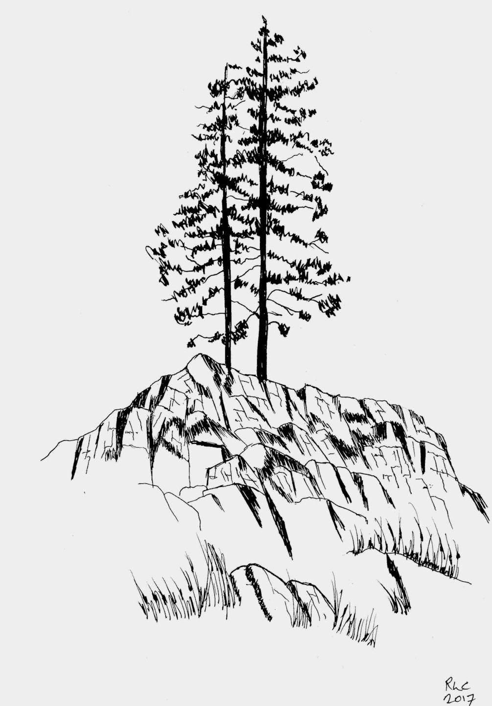 Ullswater Pines