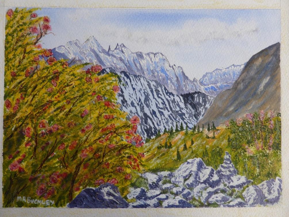 """Karacoram Rose watercolour 11x15"""""""