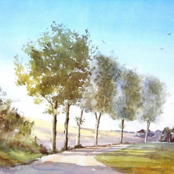 10.Plane Trees France-Dave Pilgram