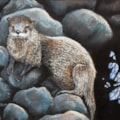 Isla the Otter