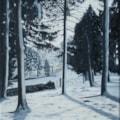 Winter at Bodenham 2