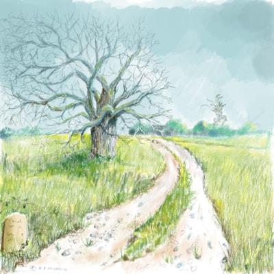 IPAD Tree
