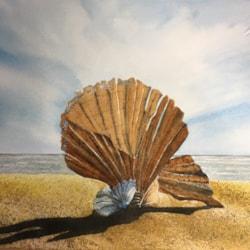 Scallop at Aldeburgh