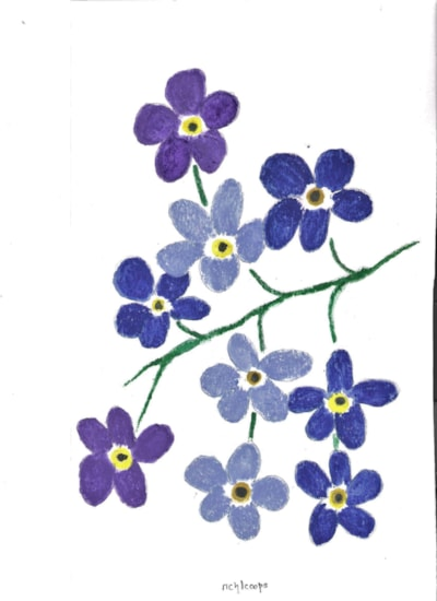 Forget - Me - Not (Again !)
