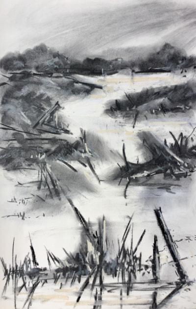 Carsegowan Moss Bunding Pools
