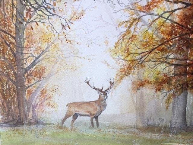 Autumn stag
