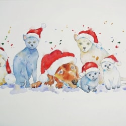 Happy Christmas From Our Furry Friends