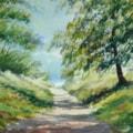 Summer Walk, Galleywood, Essex