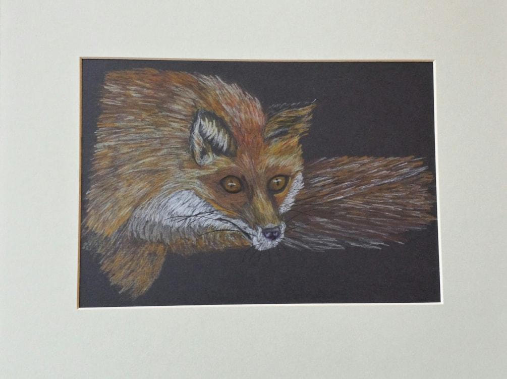 "My 1st "" Mr Fox """