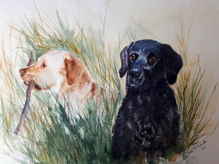 Lacey & Harvey