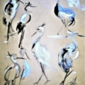 A splash of Herons....