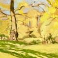Two oaks, spring