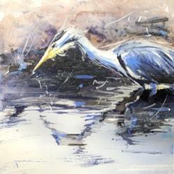 Heron Stalking on a Rising Tide