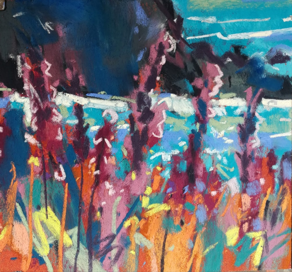 Colour study, headland blooms