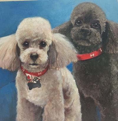 Charley and Bailey
