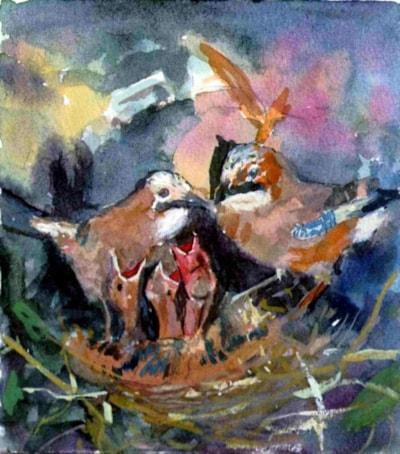 Jays Nest