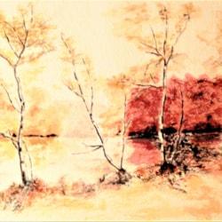 20 06 23 Esthwaite water Autumn (6)